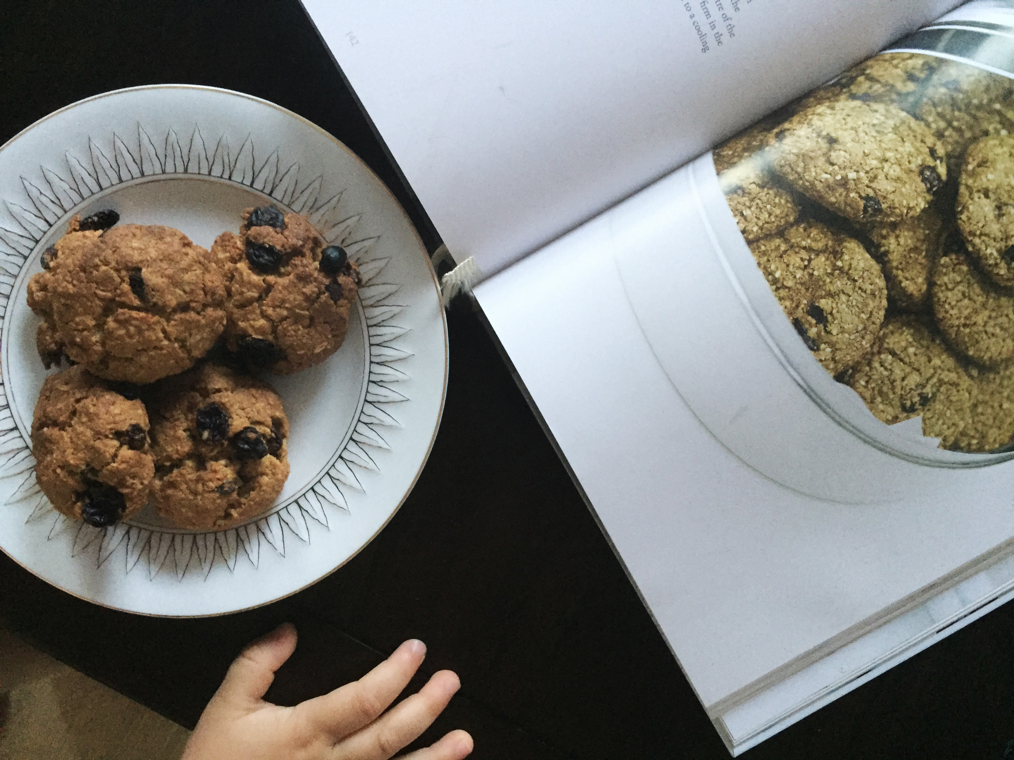 oat and raisin dairy free cookies