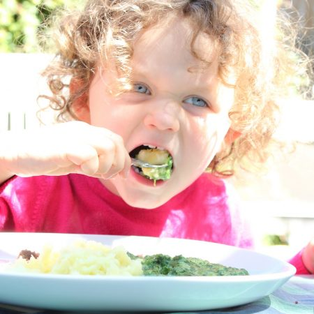 fussy-eater-solutions-online-course